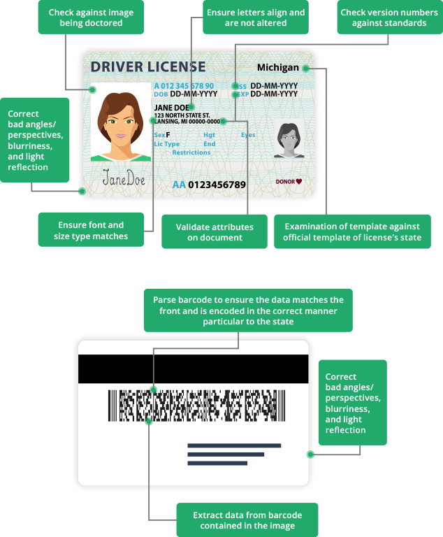 Drivers License Diagram